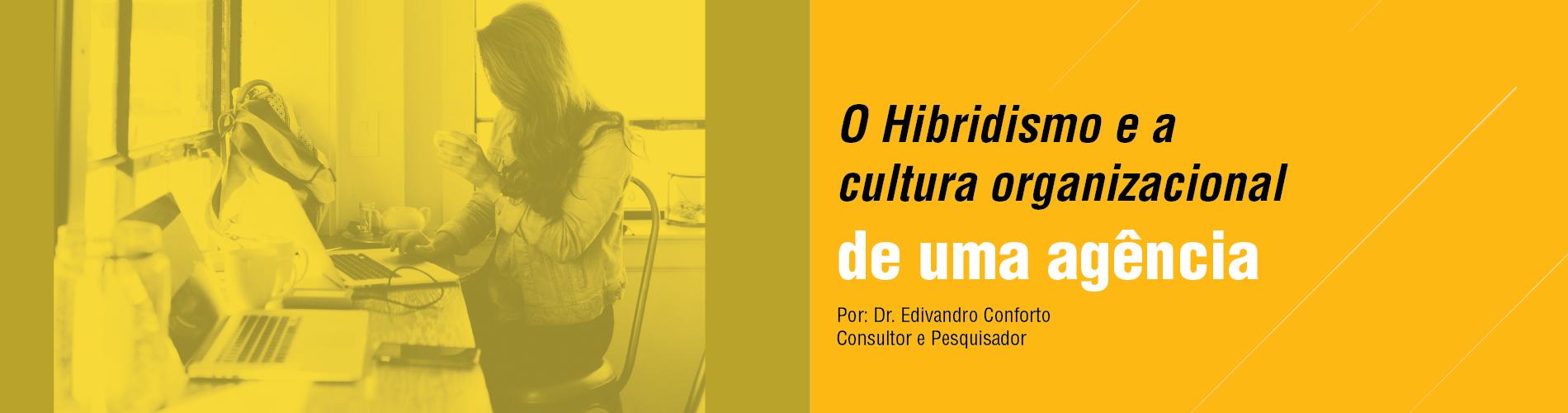 o-hibridismo-e-a-cultura-organizacional-de-uma-agencia